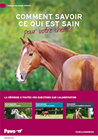 Pavo alimentation cheval