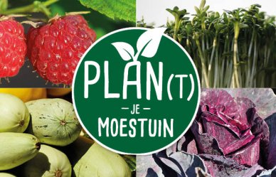 Plan(t) je moestuin: september