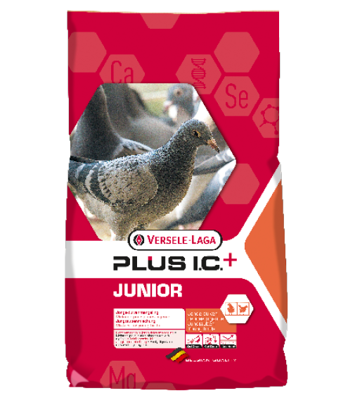 plusic.png