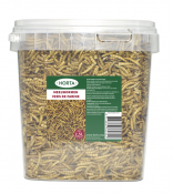 product-meelwormen-horta.png